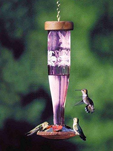 Schrodt Paradise Amethyst Lantern Hummingbird Bird Feeder ()