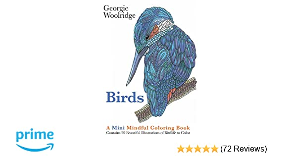 Amazon Birds A Mini Mindful Coloring Book 9781250117229 Georgie Woolridge Books