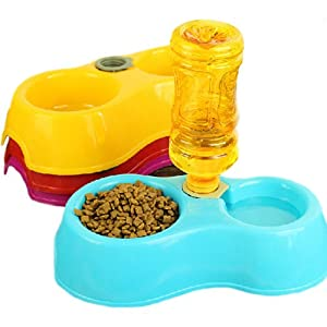 Sage Square 2 in 1 Anti Slip Food and Water Bowl for Dog/Cat/Puppy/Kitten (Random Colour)
