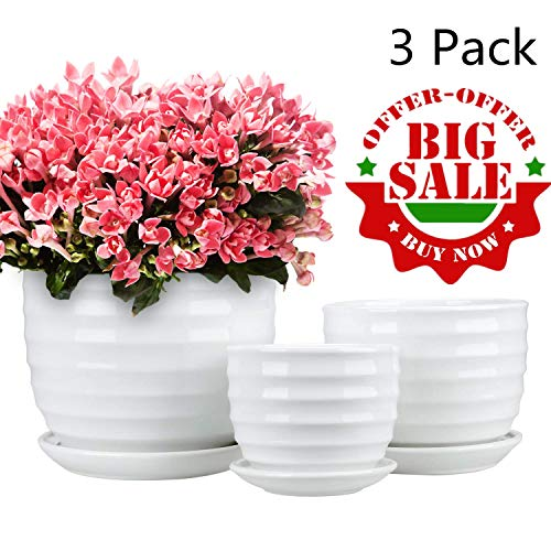 Encheng Round Modern Ceramic Garden Flower Pots Small to Medium Sized, White Planter Pots 3 Packs