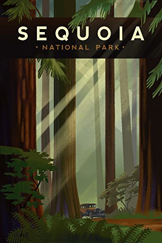 Sequoia National Park, California - Redwood Forest - Geometric Lithograph (9x12 Art Print, Wall Decor Travel Poster)