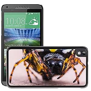 Etui Housse Coque de Protection Cover Rigide pour // M00115010 Araña Arácnido insectos Cerrar Amarillo // HTC Desire 816