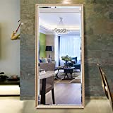 H&A 65''x22'' Full Length Mirror Bedroom Floor Mirror Standing or Hanging (Champagne)