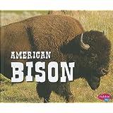 American Bison (North American Animals)