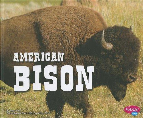North American Bison Animals (American Bison (North American Animals))