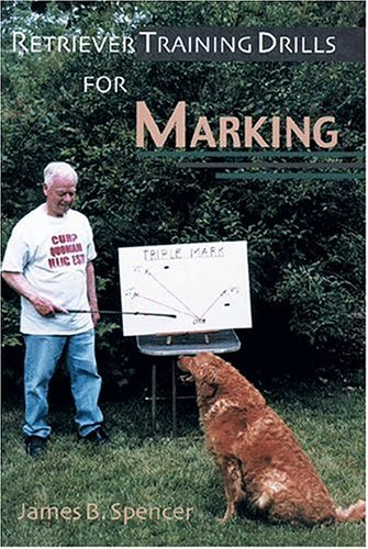 Retriever Training Drills for Marking