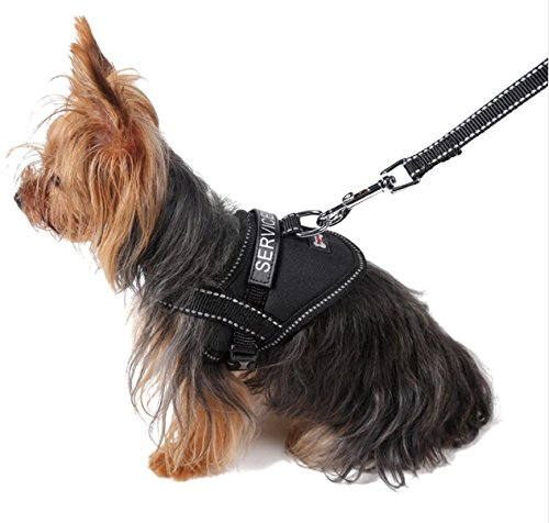 Register My Service Animal, LLC Emotional Support Animal Harness & Matching Leash Set For Small & Teacup Dogs | Three Fun Patches | Four Colors | Three sizes: 11'' - 19'' Girth by Register My Service Animal, LLC (Image #5)