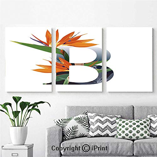 (Canvas Prints Modern Art Framed Wall Mural Letter B with Bird of Paradise Flower Alphabet Character Font Design Print Decorative for Home Decor 3 Panels,Wall Decorations for Living Room Bedroom Dini)