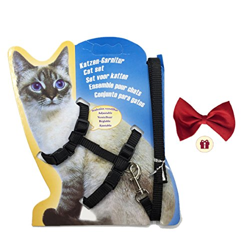 FUNPET H Cat Harness Adjustable Collar with Nylon Leash Black