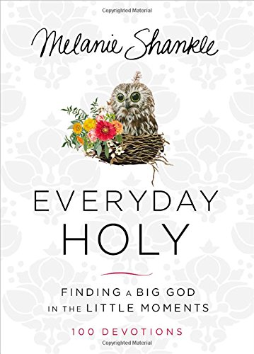 Everyday Holy: Finding a Big God in the Little Moments cover