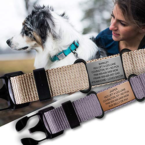 The Pet ID Slate 19mm Jingle Free Peace of Mind Dog Tag