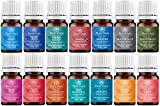 Essential Oil Blends Variety Set - 14 Pack - Best Reviews Guide