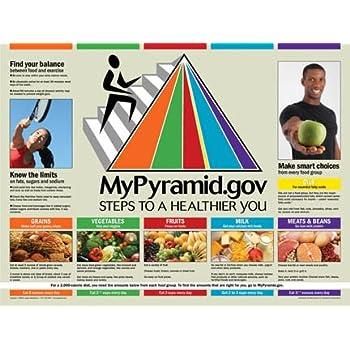 Amazoncom My Food Pyramid Poster 18 X 24 Laminated Usda