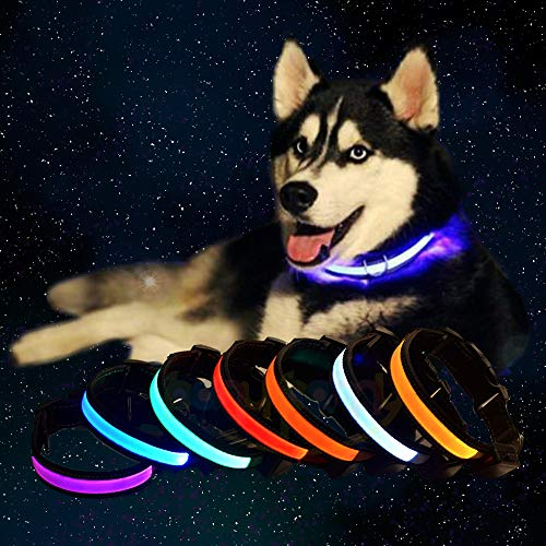 Super Bright LED Pet Dog Collar, Solar & USB Rechargeable Visibility Flashing Safety Pet Leash Reflective Glowing Adjustable Necklace Water Resistant Keep Dog Visible at Night Safety (S, Pink)