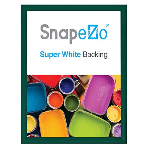 (SnapeZo Poster Frame 22x28 Inches, Green 1.2 Inch Aluminum Profile, Front-Loading Snap Frame, Wall Mounting, Premium Series)