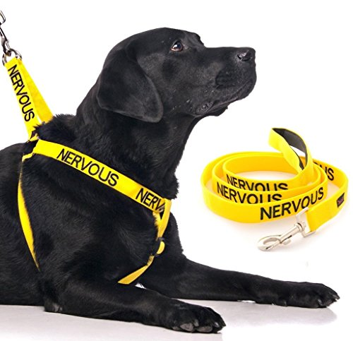 Compare Price Dog Harness Nervous On Statementsltd Com