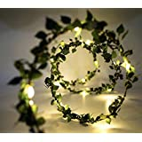 Glimmer Lightings Green Leaf Garland Decoration LED Rice Light, 5m (Off-White, String Light)