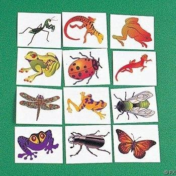 fun-express-nature-temporary-tattoos-insects-reptiles-6-dozen