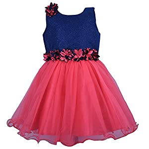 Wish Karo Baby Girl's Net Frock Dress