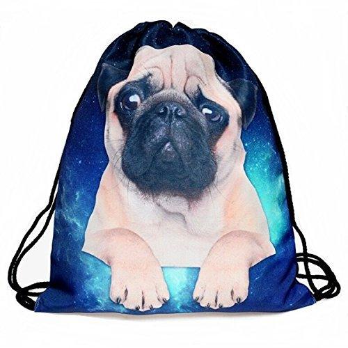 Boys Girls Teenager Drawstring Bag ?Full printing Drawstring Backpack School Shoulder Backpack Nylon Folding Bag for School Home Travel Sport Storage (Pug dog)