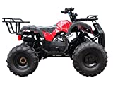 Brand New Youth Size ATV with 110cc engine and  Big Rugged Wheels with REVERSE (Red spyder)