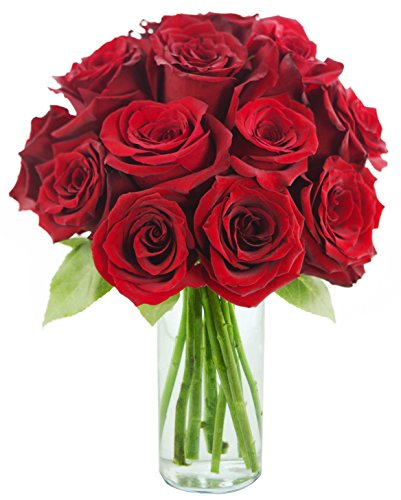 Romantic Red Rose Bouquet: 12 Fresh Cut Red Roses with Vase - by KaBloom