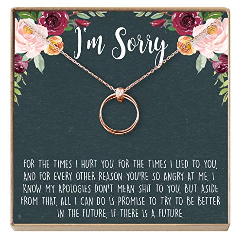 Dear Ava Apology Gift Necklace for Her: Gift to Say You're Sorry Best Friend, Girlfriend, Jewelry, 2 Linked Circles (Rose-Gold-Plated-Brass, NA)