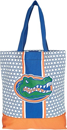 ashley-m-university-of-florida-patterned-hexagon-canvas-tote-bag-blue