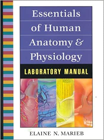 Amazon.com: Essentials of Human Anatomy and Physiology Lab Manual ...