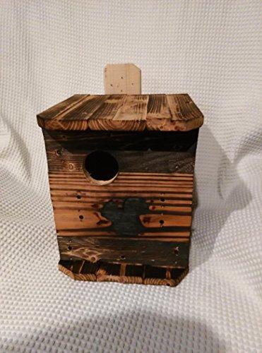 squirrel box - 4