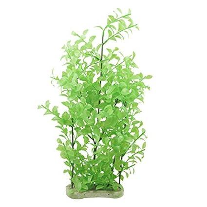 Amazon.com : eDealMax cerámica Base de acuario de plástico plantas/ornamento Hierba : Pet Supplies