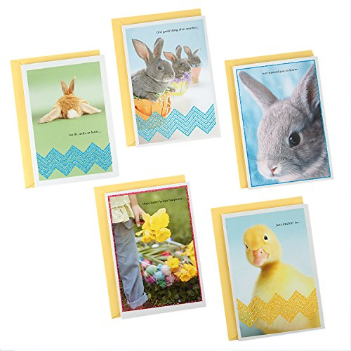 Hallmark Easter Cards Assortment, Cute Bunnies, Duck, Easter Basket Flowers (5 Cards with Envelopes)