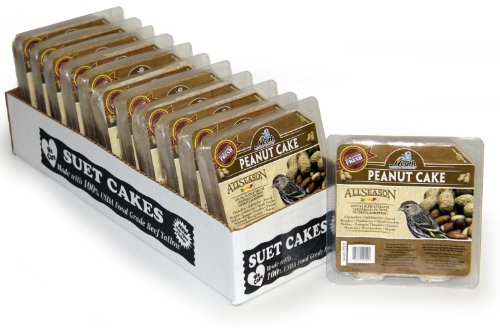 heath-outdoor-products-dd5-12-suet-peanut-cake-case-of-12