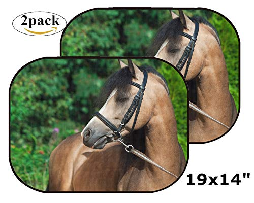 MSD Car Sun Shade Side Window Sunshade Auto 19 x 14 Universal Fit 2 Pack, Block Sun Glare, UV and Heat, Protect Car Interior, Image ID: 36301649 Portrait of Beautiful Buckskin Welsh Pony