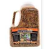 Dried Mealworm To Go Tub Wild Bird Food, My Pet Supplies