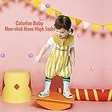 Toddler Tube Socks, Colorfox Walker Knee High