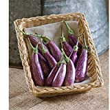 buy David's Garden Seeds Eggplant Fairy Tale OP3852 (Purple) 25 Non-GMO, Hybrid Seeds now, new 2019-2018 bestseller, review and Photo, best price $8.95