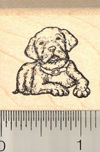 Labrador Retriever Dog Rubber Stamp, Puppy, Small
