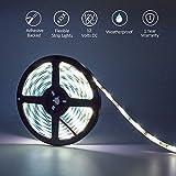 Cool White LED Light Strip, High Density 5050 - 16.4 Feet, 300 LEDs, 5000K, 218 Lumens per Foot. 12V DC