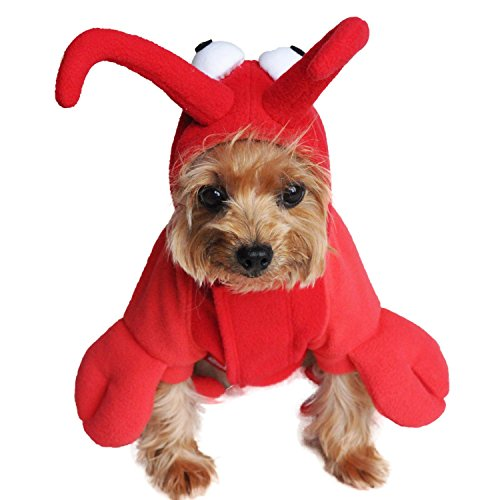 Funny Dog Halloween Costume by Doggie Design - ALL SIZES (Lobster, L) for $<!--$24.99-->