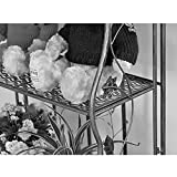 Flower Stand Shelf Multi Layer Metal Painting