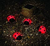 Smart Solar 3656MRM4 Ladybug Solar Red Light Set, 4-Pack, Powered by a Separate Solar Panel Allowing Lights to be Placed in Shady Areas