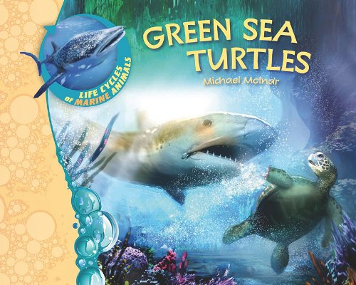 Green Sea Turtles (Life Cycles of Marine Animals) (Life Cycle Of A Green Sea Turtle compare prices)