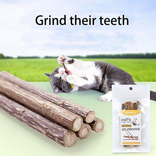 5PCS Pet Cat Kitten Chewing Stick Toy Catnip Molar