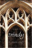 img - for Irindy book / textbook / text book