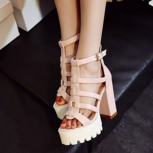 Carolbar Womens Zip Buckle Fashion Party Date Platform Chic Chunky High Heel Dress Sandals Pink TpSU8
