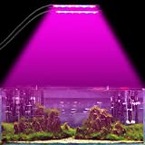 Plant Lamp Dual Head Grow Light Timing 24W