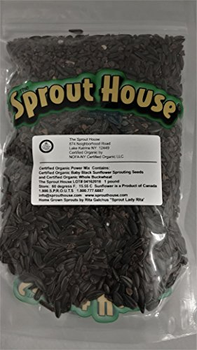 The Sprout House Organic Sprouting Seeds - Power Cleanser 1 Pound - Sunflower and Buckwheat