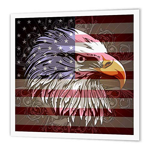 (3dRose ht_116181_3 Ornate Patriotic Bald Eagle & USA American Flag Pride Great for Fourth of July Independence Day Iron on Heat Transfer Paper for White Material, 10 by 10