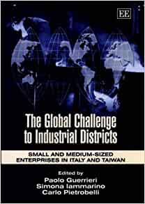 multinational enterprise mne and medium sized enterprise Volume 6, no 2 december 2003 multinational enterprise (mne) supplier networks: organizational innovation or innovation policy the case of brazilian and chilean networks.